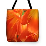Orange Flower Petals Tote Bag