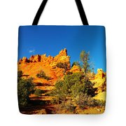 Orange Foreground A Blue Blue Sky  Tote Bag