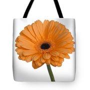 Orange Gerbera Daisy Tote Bag