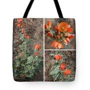 Orange Globe Mallow Collage Tote Bag