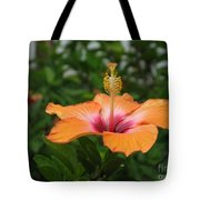 Orange Hibiscus Blossom Tote Bag