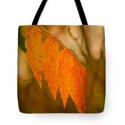 Orange Leaves Of Fall Tote Bag