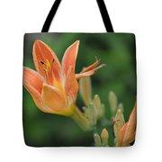 Orange Lily Photo 2 Tote Bag