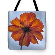 Orange On Blue Tote Bag