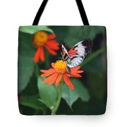 Orange On Orange Tote Bag