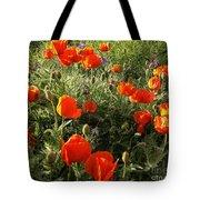 Orange Poppies In Sunlight Tote Bag