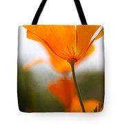 Orange Poppy In Sunlight Tote Bag