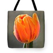 Orange Red Tulip Square Tote Bag