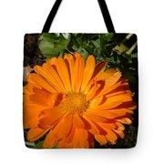 Orange Ruffles Tote Bag