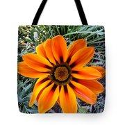Orange Tote Bag by Saifon Anaya