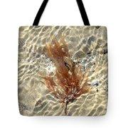 Orange Seaweed Tote Bag