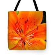 Orange Slices Tote Bag