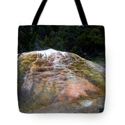 Orange Spring Mound #2 Tote Bag