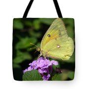 Orange Sulphur Tote Bag