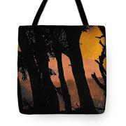 Orange Sunset Forest Tote Bag