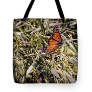 Orange Swallowtail Tote Bag