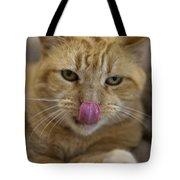 Orange Tabby Cat Licking Nose Tote Bag