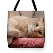 Orange Tabby Cat Lying Down Tote Bag