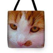 Orange Tabby Kitten Tote Bag