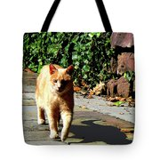 Orange Tabby Taking A Walk Tote Bag