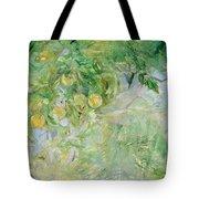Orange Tree Branches Tote Bag