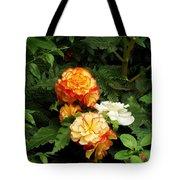 Orange Trim Tote Bag