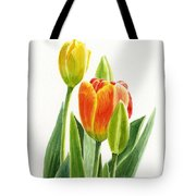 Orange Tulip With Buds Tote Bag