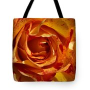 Orange Variegated Rose Tote Bag