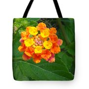 Orange Wildflower Tote Bag