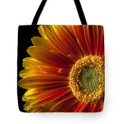 Orange Yellow Mum Close Up Tote Bag