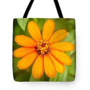 Orange Zenia Tote Bag