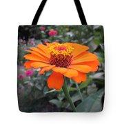 Orange Zinnia Tote Bag