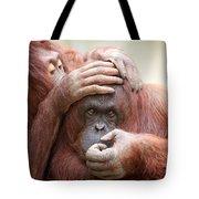 Orangrooming Tote Bag