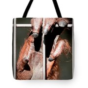 Orangutan Hand Close-up Tote Bag