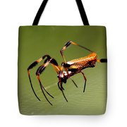 Orb Weaver - Coastal Spider Tote Bag