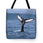 Orca Bitemarks On Humpback Tail Tote Bag