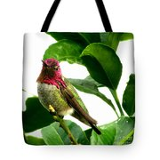 Orchard Friend Tote Bag