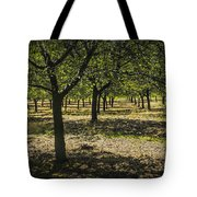 Orchard In West Michigan No. 279 Tote Bag