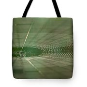 Orchard Orbweaver #2 Tote Bag