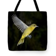 Orchard Oriole Hen Tote Bag