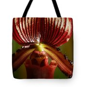 Orchid 132 Tote Bag