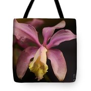 Orchid 133 Tote Bag