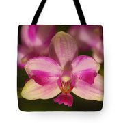 Orchid 144 Tote Bag