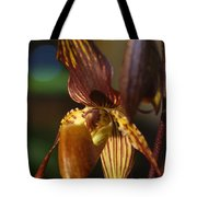 Orchid 150 Tote Bag