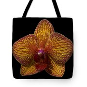 Orchid 16 Tote Bag