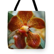 Orchid 195 Tote Bag