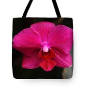 Orchid 199 Tote Bag