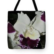 orchid 221 Cattleya Moscombe 'The King'  1 of 3 Tote Bag