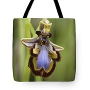 Orchid 25 Tote Bag