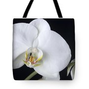 Orchid 2c Tote Bag